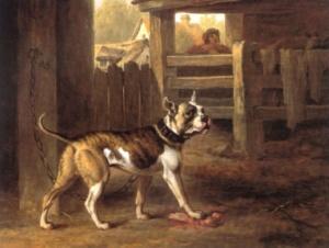 Die englischen Ahnen der Französischen Bulldogge wurden für den Kampf gezüchtet und entsprechend aggressiv